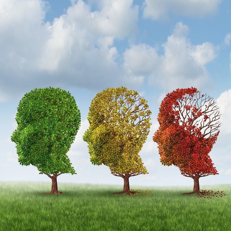Elder Care in Elba AL: Seniors with Dementia