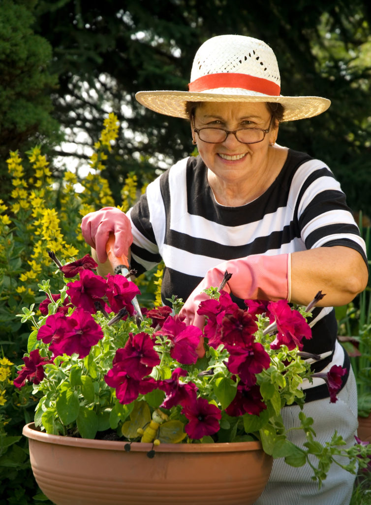 Homecare in Ozark AL: Senior Safe While Gardening